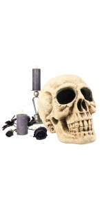 Crâne Master Brain 37x34 cm