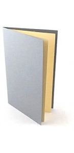 Lot de 10 menus blancs impression argent