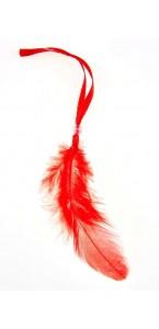 Lot de 12 plumes rouges avec un lien