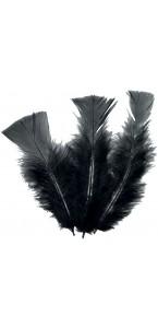 Lot de 18 plumes noires 14 cm