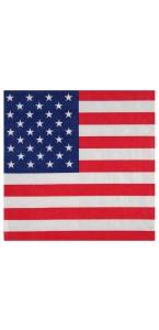 Lot de 20 serviettes Amérique en papier 33 x 33 cm