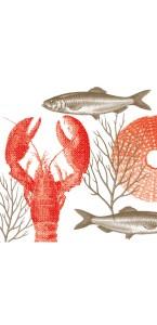 Lot de 20 serviettes intissée Lobster 40 x 40 cm