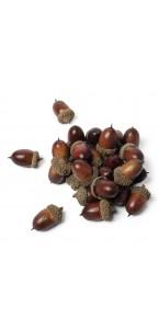 Lot de 24 glands déco d'automne 3,5 cm