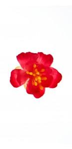Lot de 6 fleurs de cerisier fuschia