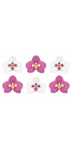 Lot de 6 Orchidées blanches et fuschia papier 3D 8,5 cm