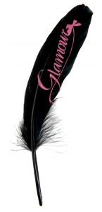 Lot de 6 plumes Glamour noires
