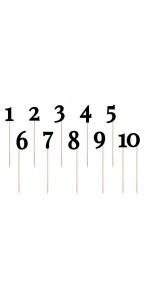 Lot de Chiffres de 1 à 10 sur pic 24  à 26 cm