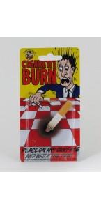 Mégot et fausse brulûre de cigarettes (CE)