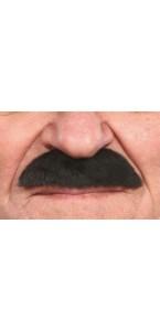 Moustache américaine noire