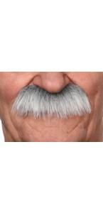 Moustache Brosse grise