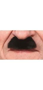 Moustache Chaplin noire