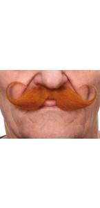 Moustache Guillaume rousse