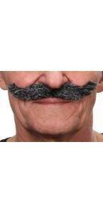 Moustache Hongroise poivre et sel