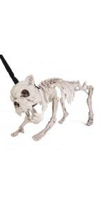 Squelette de bouldogue beige Halloween 40 cm lumineux et sonore