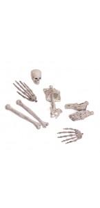Squelette démembré dans filet Halloween 4 x 3,5 x 5,5 cm