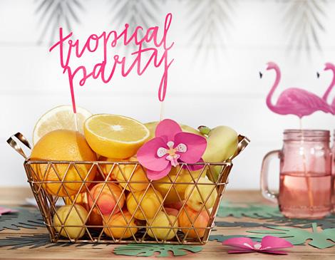 Thème Tropical