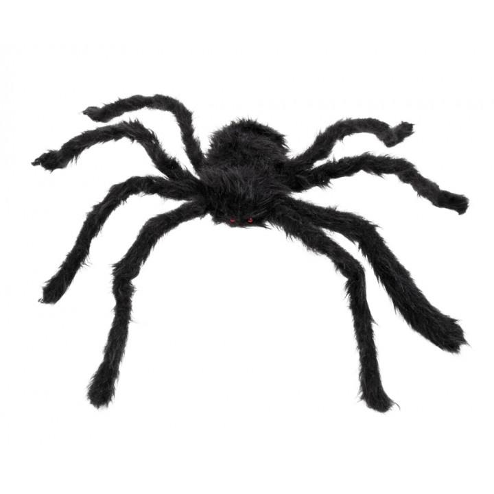 Image Araignée Halloween araignée velue halloween noire géante