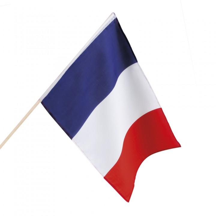 Drapeau tricolore sur tige 30 x 45 cm