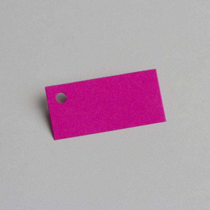 Lot de 12 étiquettes rectangle fuschia