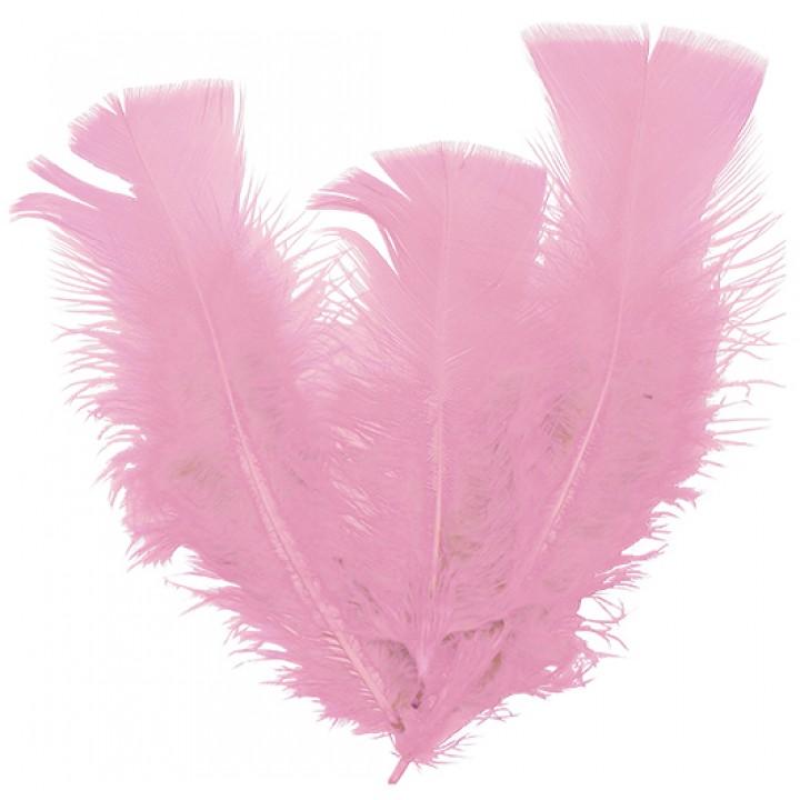Lot de 18 plumes roses 14 cm