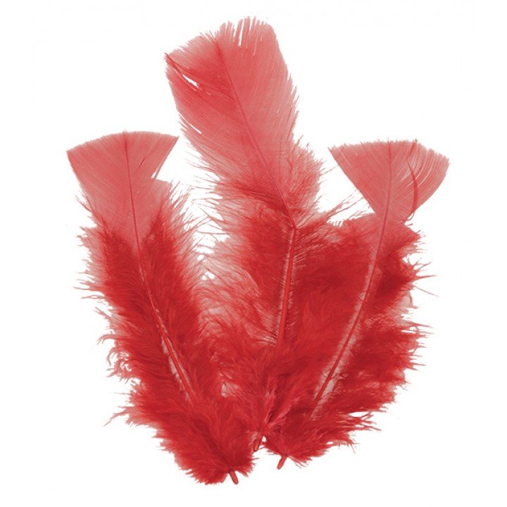 Lot de 18 plumes rouges 14 cm