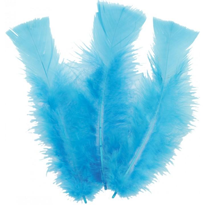 Lot de 18 plumes turquoise  14 cm