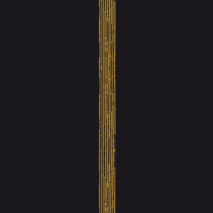 Lot de 20 Serviettes intissé Empreinte noir 40 x 40cm