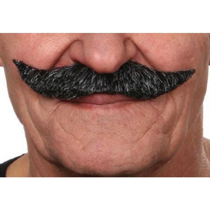 Moustache à la française poivre et sel