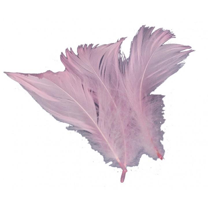 Plumettes  roses 5 gr
