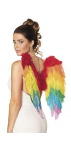Ailes Rainbow 50 x 50 cm