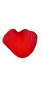 Boîte de 200 Pétales de rose rouges en tissu