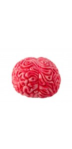 Cerveau Halloween 16 x 12 x 9 cm