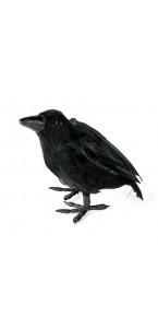 Corbeau noir Halloween 16 x 10 cm