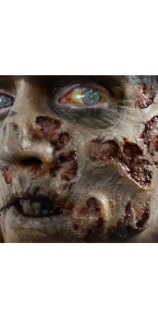 Fausse Cicatrice zombie 3D Halloween
