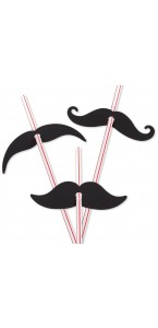 Lot de 12 pailles moustache jetables