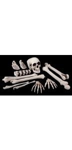 Lot de 12 pièces  crâne + ossements halloween