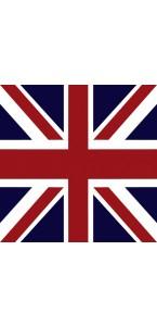 Lot de 20 Serviettes intissé British  25 x 25 cm