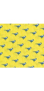 Lot de 20 serviettes intissée Birds 40 x 40 cm