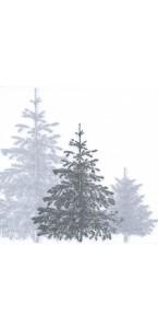 Lot de 20 serviettes Wald argent intissé 40 x 40 cm