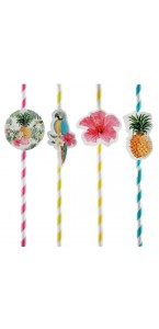 Lot de 8 pailles Tropicales 19,5 x 0,6 cm