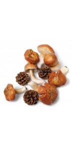 Lot de 9 champignons déco assortis + 5 pommes de pin 5/9 cm