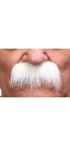 Moustache brosse blanche
