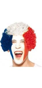 Perruque frisée tricolore