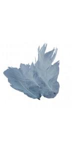 Plumettes grises 5 gr