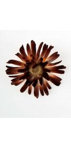 Sachet de 4 fleurs  gerberas chocolat