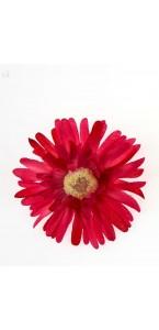 Sachet de 4 fleurs  gerberas fuschia