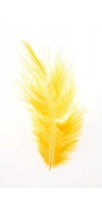 Sachet de plumes tournesol 5g (50 plumes)