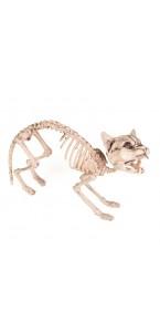 Squelette de chat beige Halloween 60 cm lumineux et sonore