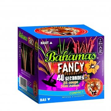 Feu d'artifice compact Bahamas Fancy sifflant 25 coups