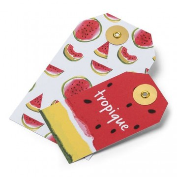 Lot de 10 Etiquettes Pastèque/Tropique 13 x 7,5 cm- 9,5 x 5,5 cm